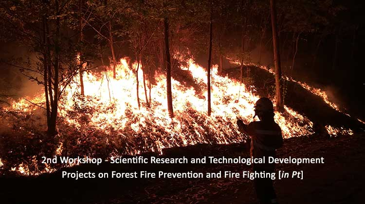 2nd Workshop - Scientific Research and Technological Development Projects on Forest Fire Prevention and Fire Fighting